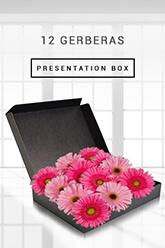 12 Gerberas - Boxed